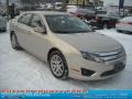 2010 Smokestone Metallic Ford Fusion SEL V6  photo #20
