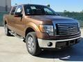 Golden Bronze Metallic 2011 Ford F150 Gallery