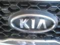 2011 Bright Silver Kia Sorento LX  photo #24