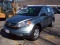 2010 Opal Sage Metallic Honda CR-V LX AWD  photo #25