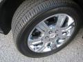 2010 DTS Platinum Wheel