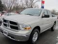 Light Graystone Pearl 2010 Dodge Ram 1500 Gallery
