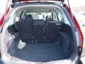 Black Trunk Photo for 2009 Honda CR-V #46441008