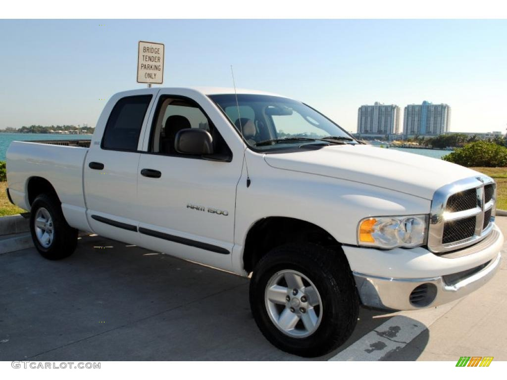 2002 Ram 1500 SLT Quad Cab 4x4 - Bright White / Dark Slate Gray photo #9
