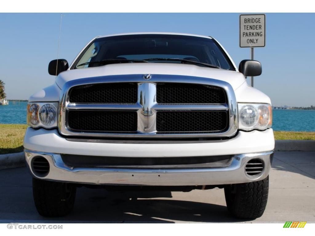 2002 Ram 1500 SLT Quad Cab 4x4 - Bright White / Dark Slate Gray photo #10