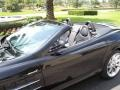 Galaxite Black Metallic - SLR McLaren Roadster Photo No. 9