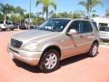 Desert Silver Metallic 2001 Mercedes-Benz ML 430 4Matic