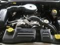 5.9 Liter OHV 16-Valve V8 2000 Dodge Durango SLT 4x4 Engine