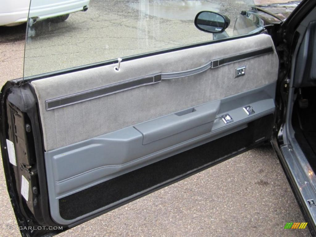 1987 Buick Regal Grand National Black/Gray Door Panel Photo #47880050 & 1987 Buick Regal Grand National Black/Gray Door Panel Photo ... pezcame.com