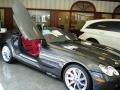 Palladium Grey Metallic - SLR McLaren Roadster Photo No. 14