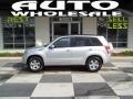 Silky Silver Metallic 2007 Suzuki Grand Vitara XSport 4x4