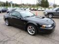 2001 Black Ford Mustang Bullitt Coupe  photo #6