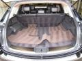 Graphite Trunk Photo for 2010 Infiniti FX #48434043