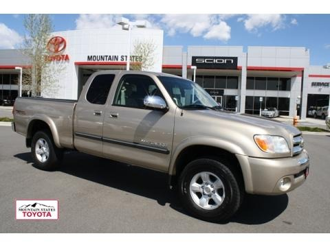 2006 toyota tundra sr5 trd access cab 4x4 data info and. Black Bedroom Furniture Sets. Home Design Ideas