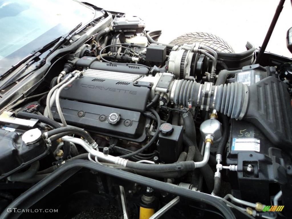 1995 chevrolet corvette convertible 57 liter ohv 16 valve lt1 v8 1995 chevrolet corvette convertible 57 liter ohv 16 valve lt1 v8 engine photo 49578595 sciox Choice Image