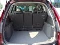 Gray Trunk Photo for 2009 Honda CR-V #50281968