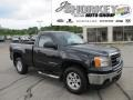 Carbon Black Metallic 2009 GMC Sierra 1500 SLE Regular Cab 4x4