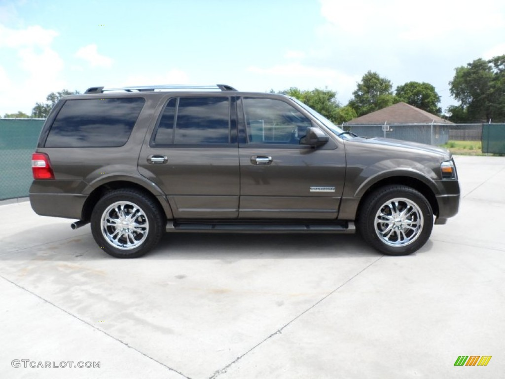 Stone Green Metallic 2008 Ford Expedition Limited Exterior ...