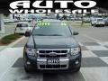 2009 Black Pearl Slate Metallic Ford Escape Limited  photo #2