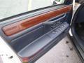 1995 Cadillac DeVille Blue Interior Door Panel Photo