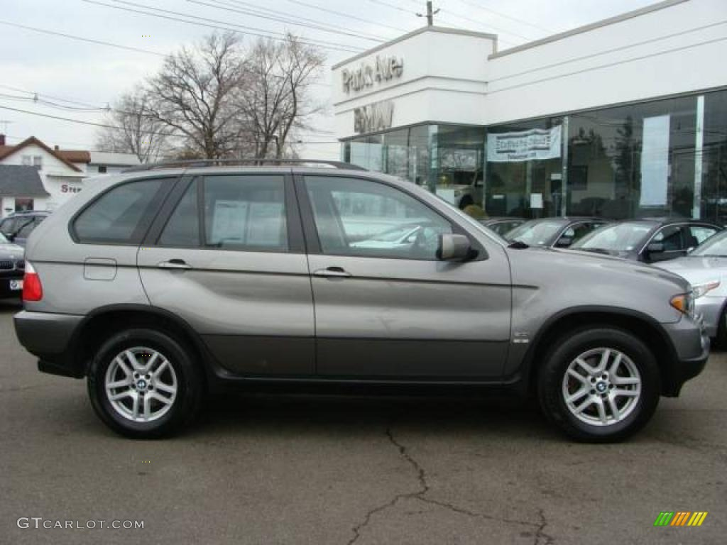 2006 stratus grey metallic bmw x5 5079593 car color galleries. Black Bedroom Furniture Sets. Home Design Ideas
