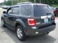2009 Black Pearl Slate Metallic Ford Escape Limited V6 4WD  photo #7