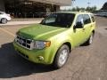 SQ - Lime Squeeze Metallic Ford Escape (2011-2012)
