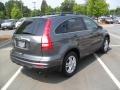 2010 Polished Metal Metallic Honda CR-V EX-L  photo #4