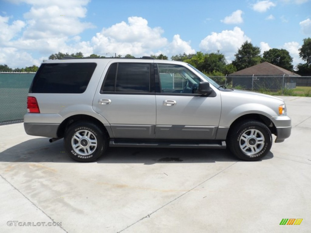 Silver Birch Metallic 2003 Ford Expedition XLT Exterior Photo #51431910