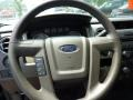 2009 F150 XLT Regular Cab 4x4 Steering Wheel