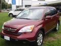 2009 Tango Red Pearl Honda CR-V EX-L 4WD  photo #24