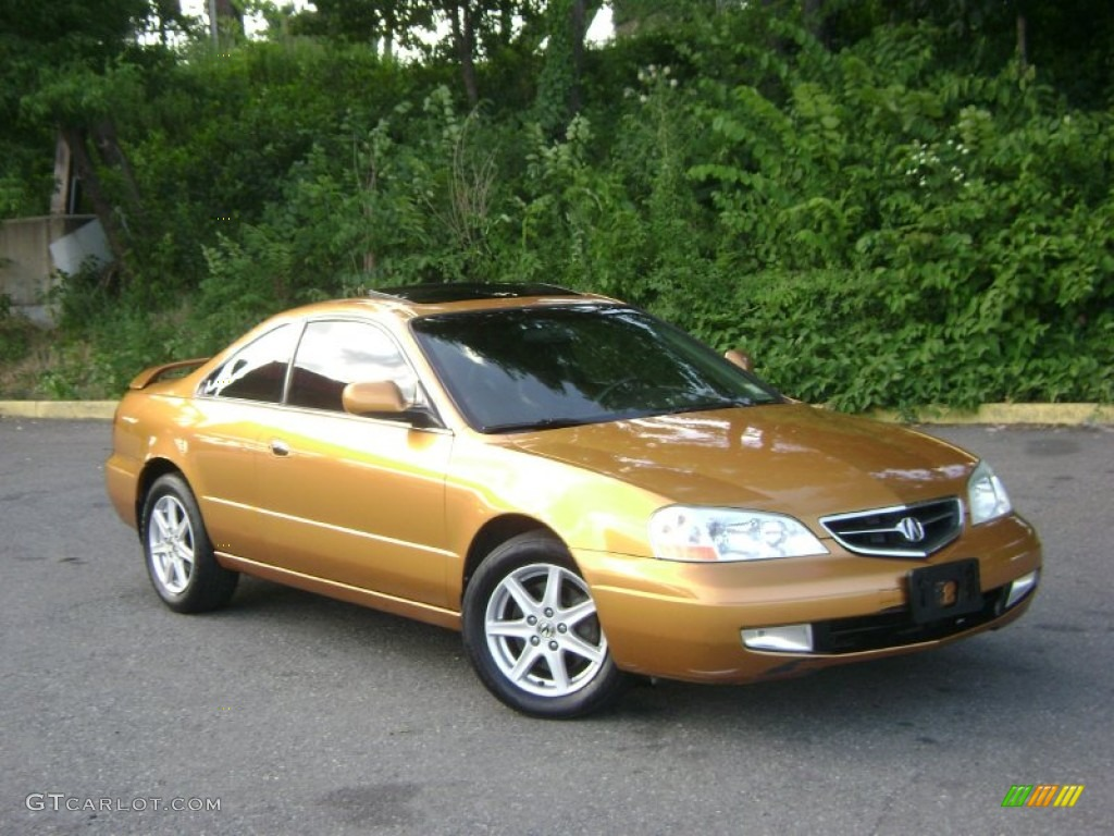 2010 Acura 3.2 CL Type S photo - 2