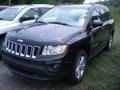 Blackberry Pearl 2011 Jeep Compass Gallery