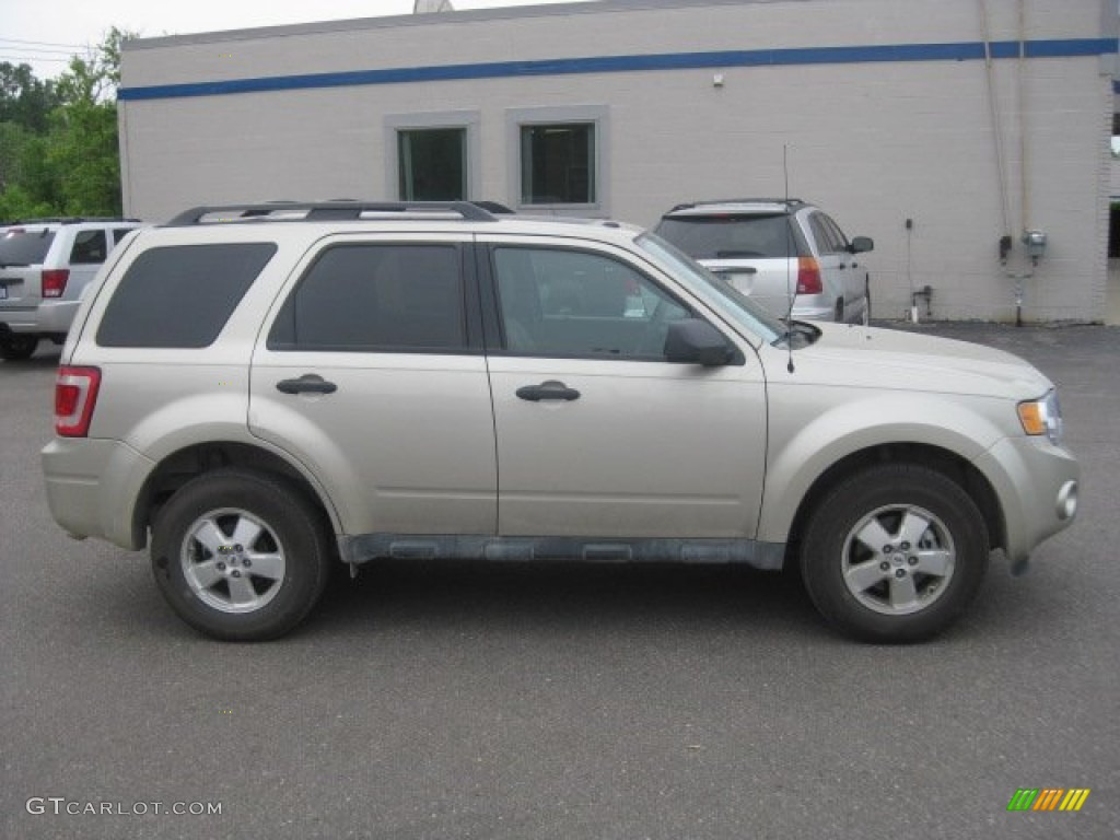 Gold Leaf Metallic 2012 Ford Escape Limited Exterior Photo 52074068