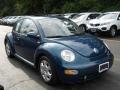 Riviera Blue Pearl 2002 Volkswagen New Beetle Gallery