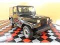 Black 1993 Jeep Wrangler Gallery
