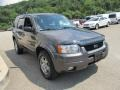 Dark Shadow Grey Metallic 2004 Ford Escape Gallery
