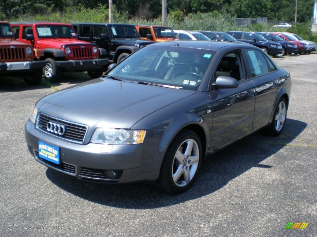 2004 dolphin grey metallic audi a4 1 8t quattro sedan 52453144 car color galleries. Black Bedroom Furniture Sets. Home Design Ideas