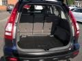 Gray Trunk Photo for 2009 Honda CR-V #52543865