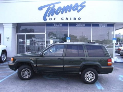 1995 jeep grand cherokee limited data info and specs. Black Bedroom Furniture Sets. Home Design Ideas