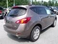 2010 Tinted Bronze Metallic Nissan Murano SL  photo #5