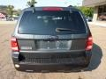 2009 Black Pearl Slate Metallic Ford Escape XLT  photo #3