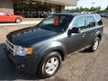2009 Black Pearl Slate Metallic Ford Escape XLT  photo #8