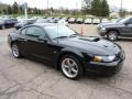 2001 Black Ford Mustang Bullitt Coupe  photo #6