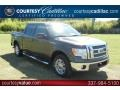 Sterling Grey Metallic 2009 Ford F150 Gallery