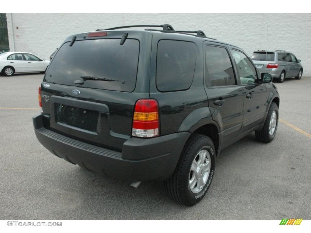 Aspen Green Metallic 2004 Ford Escape Xlt V6 4wd Exterior Photo 54101118 Gtcarlot Com