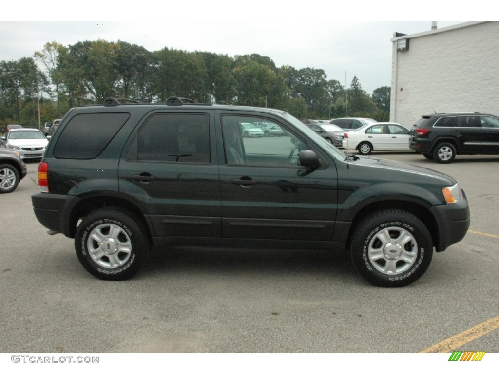 aspen green metallic 2004 ford escape xlt v6 4wd exterior. Black Bedroom Furniture Sets. Home Design Ideas