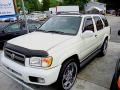 Glacier White Pearl 2002 Nissan Pathfinder Gallery