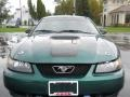 2002 Tropic Green Metallic Ford Mustang V6 Coupe  photo #18