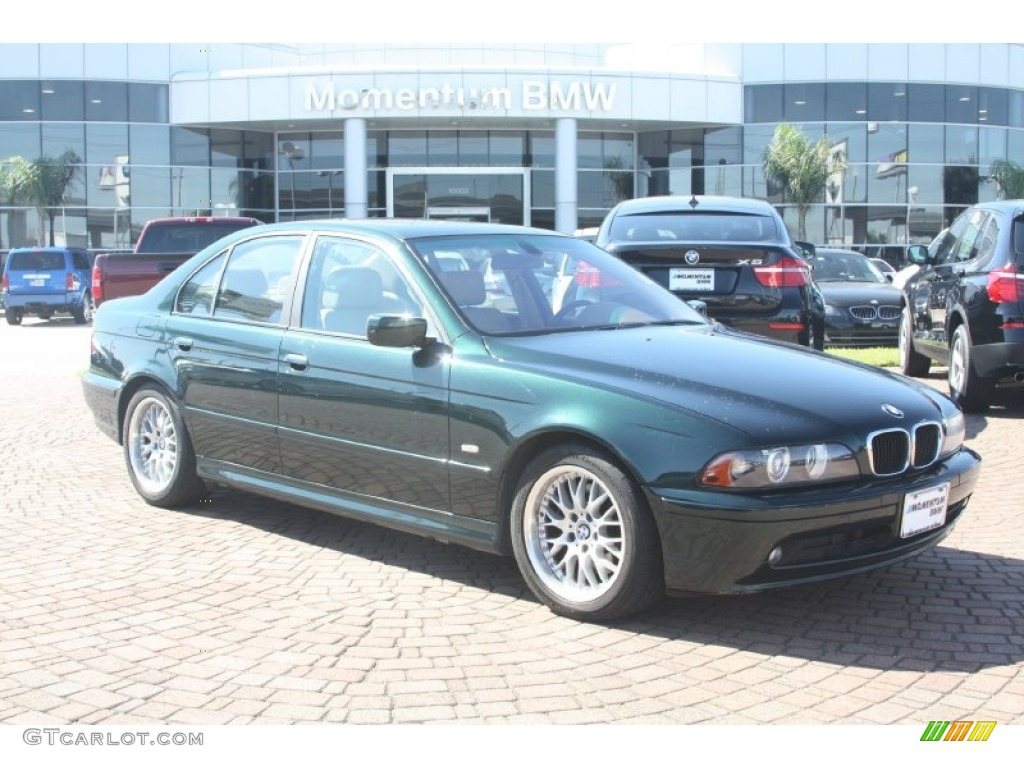 2002 oxford green metallic bmw 5 series 530i sedan. Black Bedroom Furniture Sets. Home Design Ideas